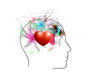 Christophe Pichon - Intelligence émotionnelle